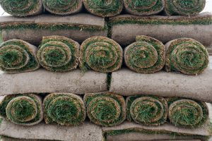 Tips for Laying Down Sod