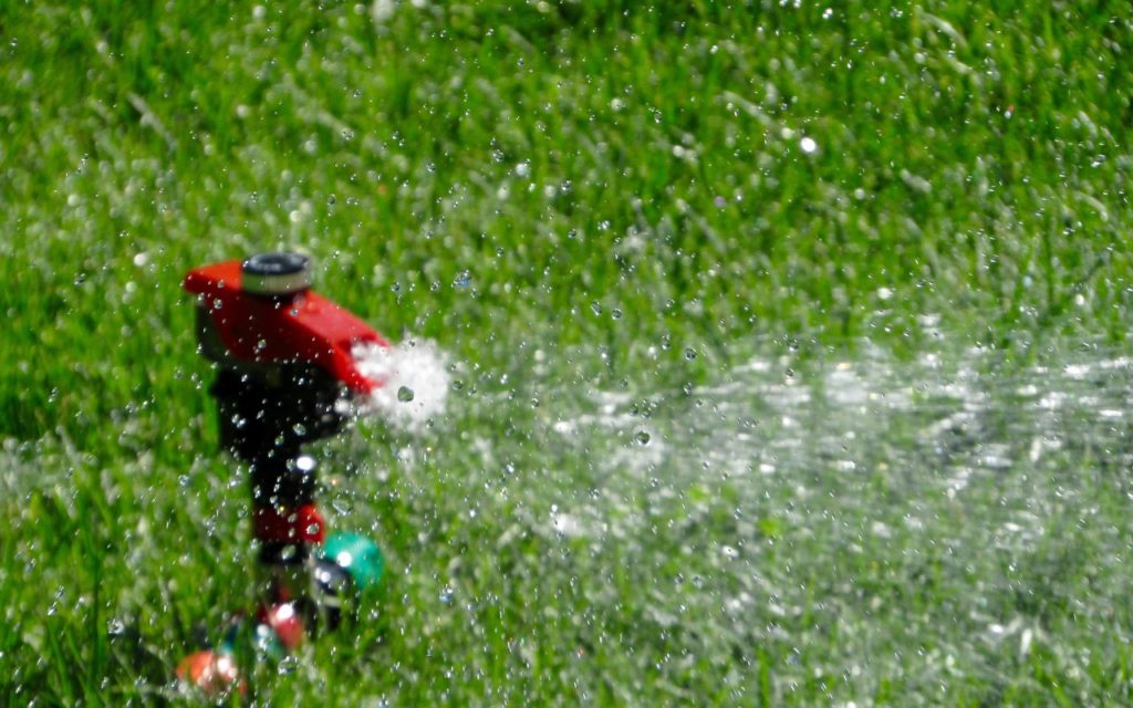 Different Ways to Water Your Lawn