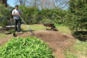 A Look at Various Ways to Perform Lawn Seeding