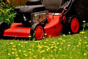 quantico creek sod farm lawn care